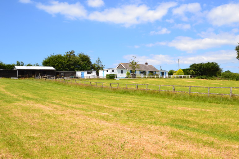Detached 4 Bedroom Bungalow With 7 Acres Horse Amp Hound