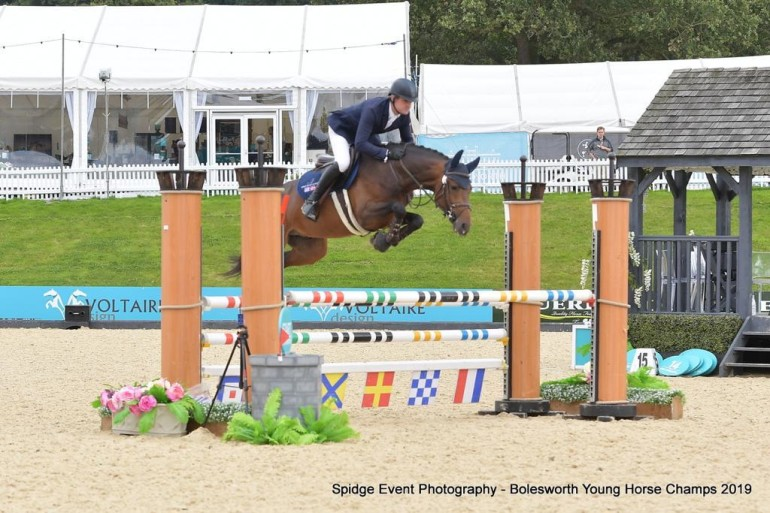 Horses for sale in Suffolk - Horse & Hound