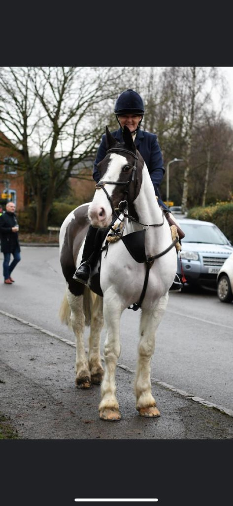 Super hunting cob!
